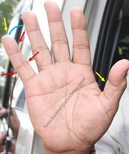 Best Signs In Palmistry And Super Powerful Signs On Your ...